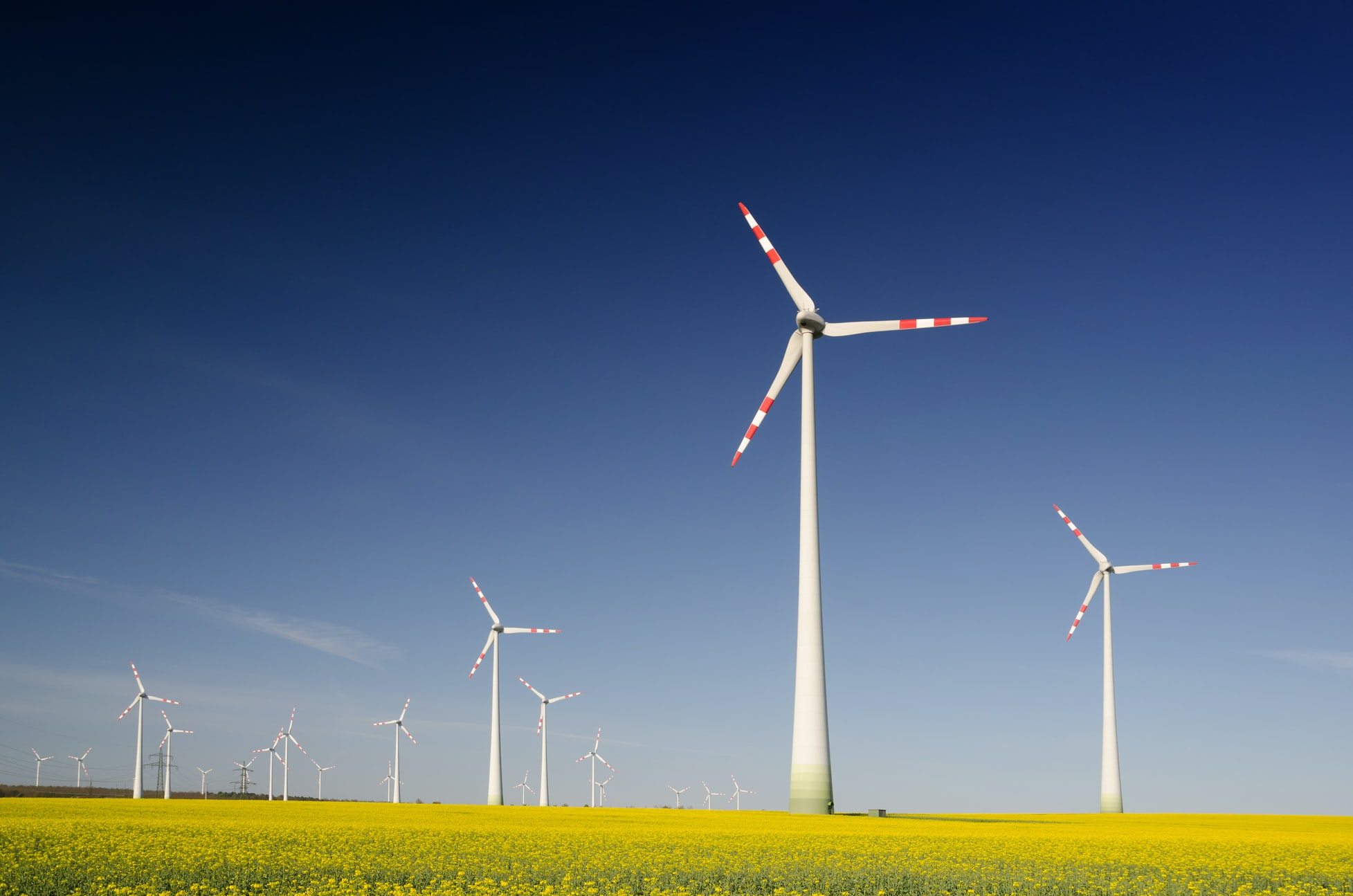 Renewable Energy – How does it benefit your business?